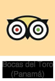 Trip Advisor Bocas del Toro